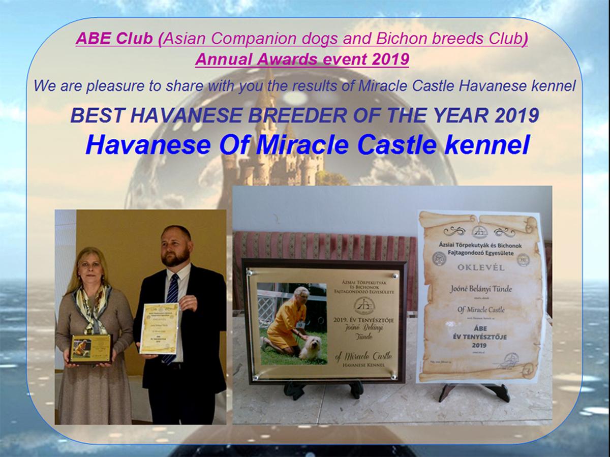 Best Havanese  breeder of the year 2019